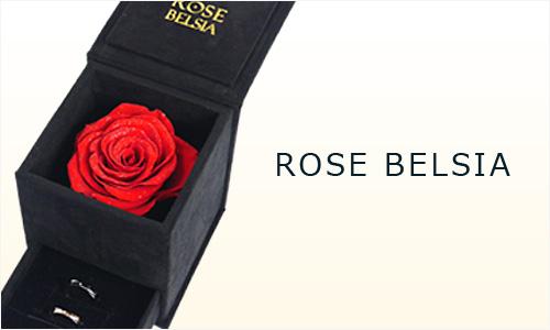 ローズベルシア バラのケース