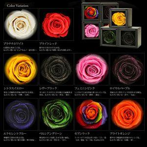 名前が入れられる おしゃれな 『サークル ネームペンダント』のバラのケースのカラーバリエーション